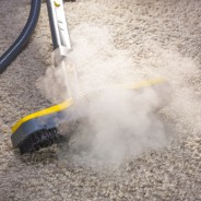 Best Carpet Steamer – The Best Carpet Steamer For Your Floor