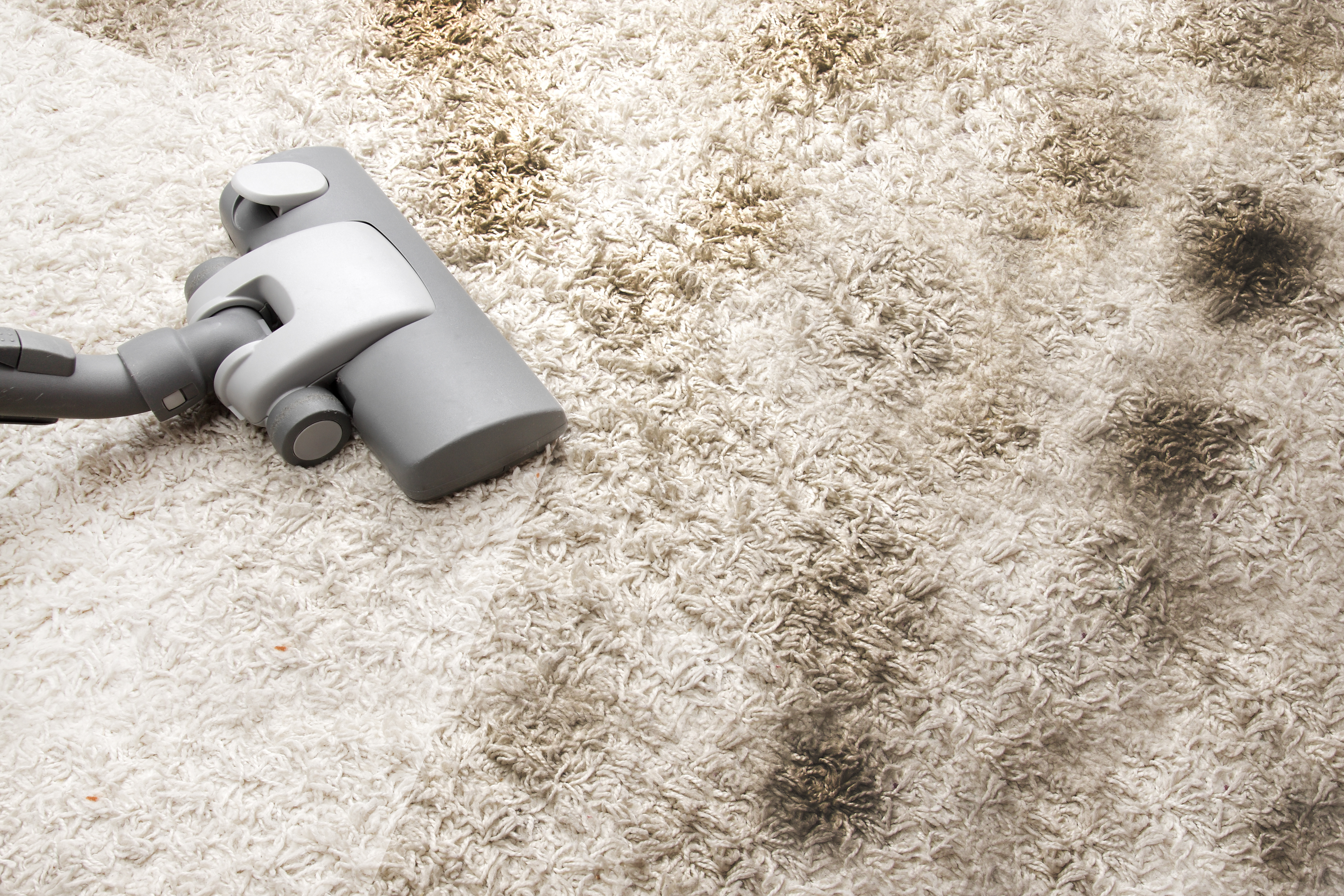 Cleaning Vacuuming Very Dirty Carpet